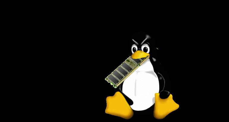 Help! Linux ate my RAM!